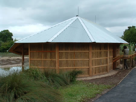 Bird hide with reed cladding